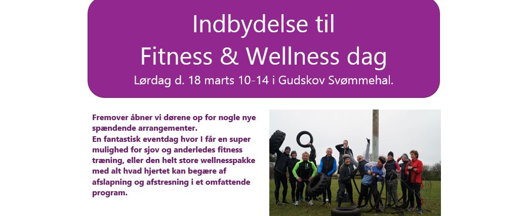 Fitness & Wellness dag hos FyzFit